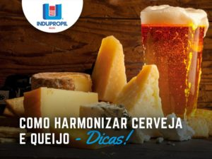 como harmonizar cerveja e queijo