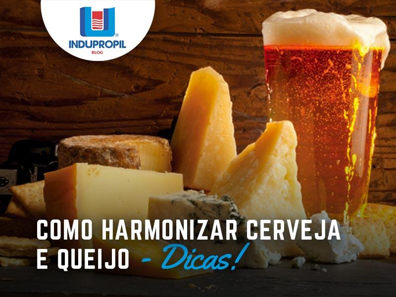 Dicas de como harmonizar cervejas e queijos!