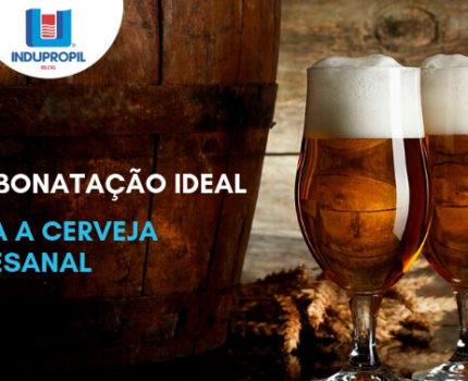 Qual a carbonatação ideal para a sua cerveja artesanal?
